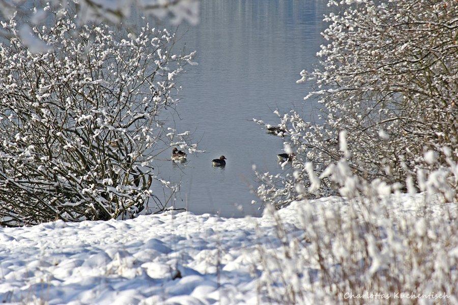 Kulinarisch im Sauerland unterwegs, Möhnesee, Möhnetalsperre, Winter am Möhnesee