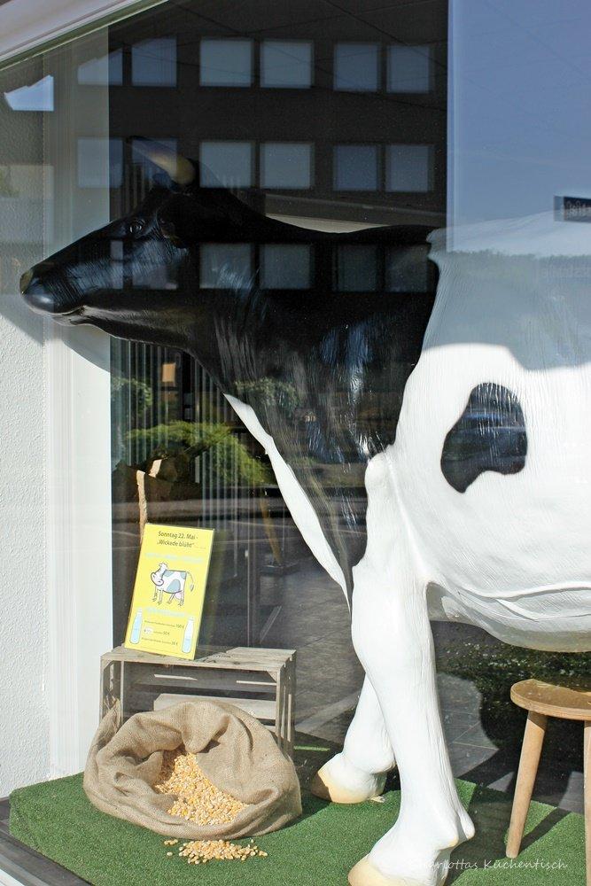 Kuh, Melkwettbewerb, 12von12, 12 von 12