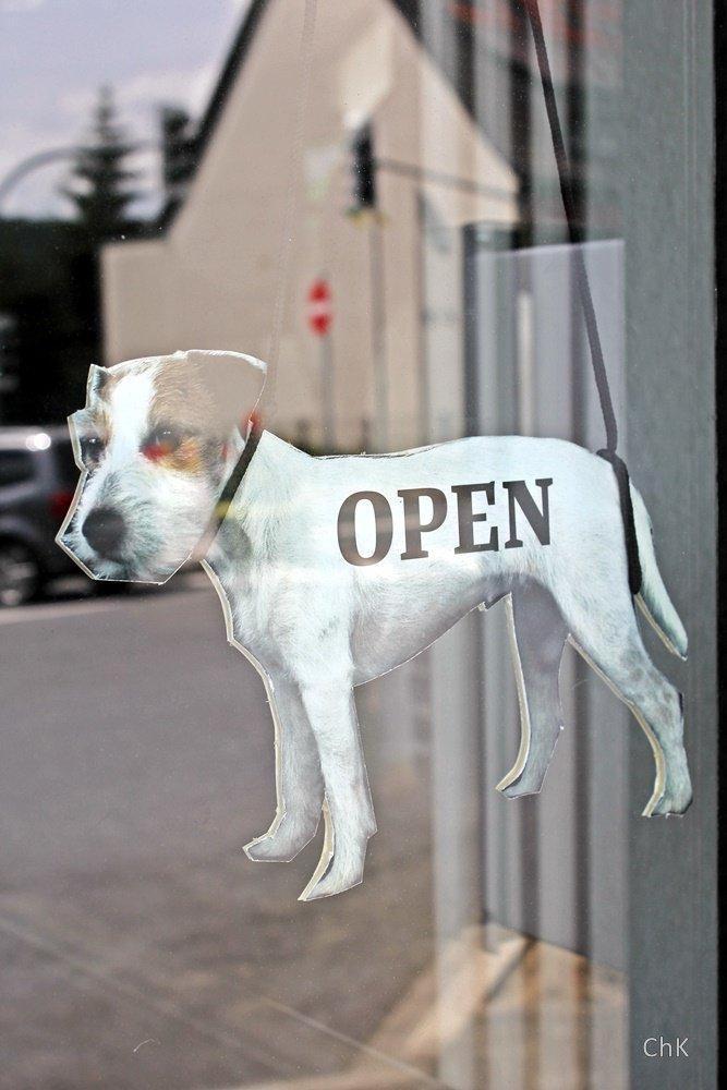 Gretel, Hund, Parson Terrier, 12 von 12 Juli 2016, 12von12,