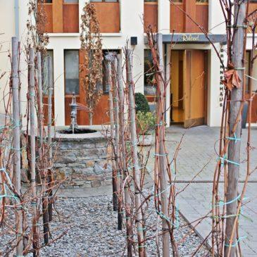Aktiv im Ahrtal – das Hotel Ruland mit seinem Brunnenhaus bietet die beste Voraussetzung für schöne Tage